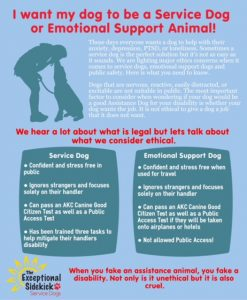 Emotional support dogs comparison of ESA & SD