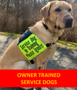 contact - owner trained